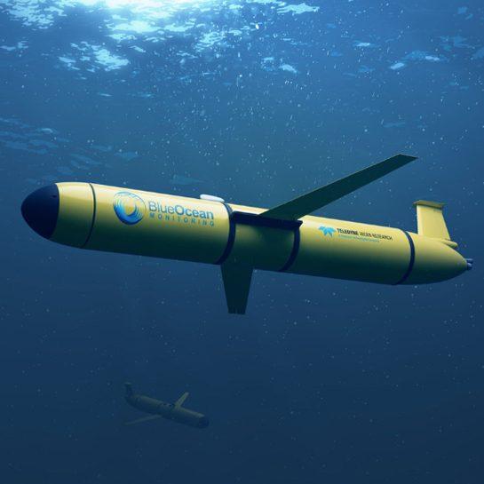 Blue Ocean Monitoring