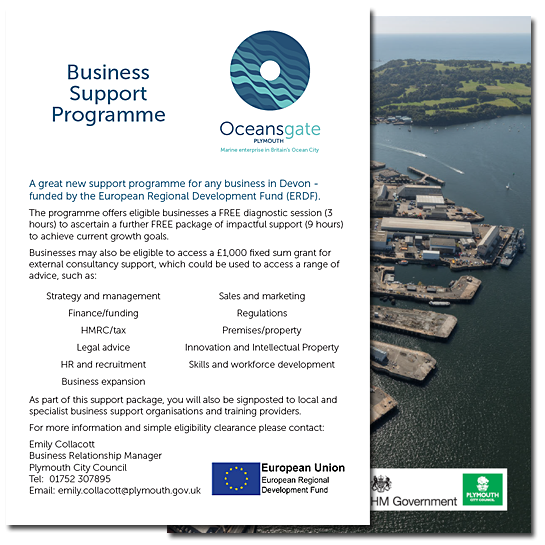Business Support Programme